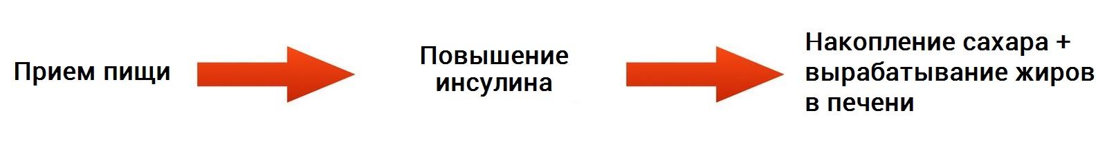 интервальное голодание схема 16/8